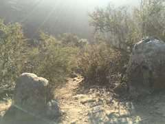 Rock Climbing Photo: This is the trailhead branching off of the ridge t...