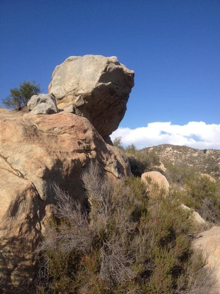 Rock Climbing Photo: 20 foot boulder in Simpson park