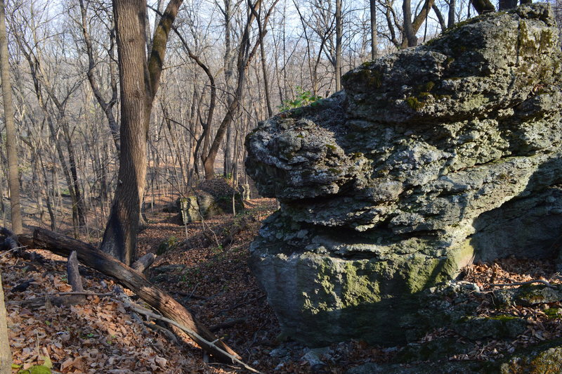 Rock Climbing Photo: The one big boulder I found