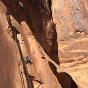 Rock Climbing Photo: Stellar climbing!