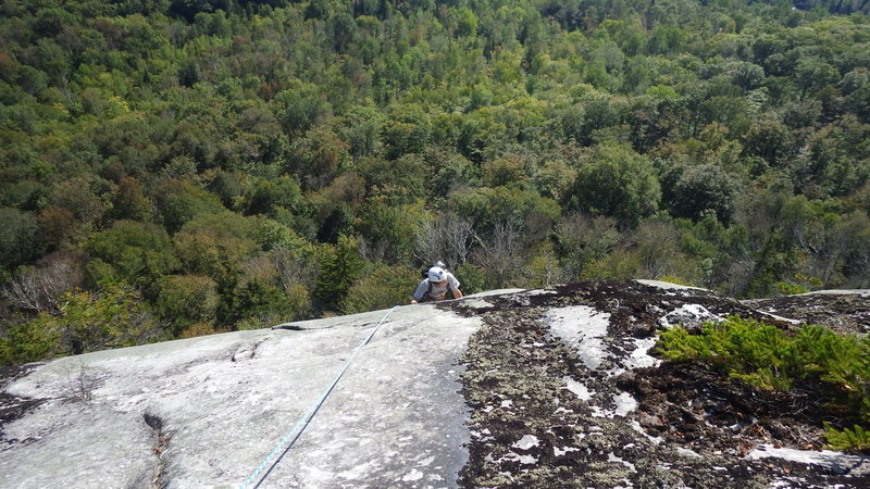 Topping out on Woolite
