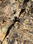 Rock Climbing Photo: One of 2 pitons on this route - clip'em