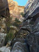 Rock Climbing Photo: P1, aka the approach pitch.