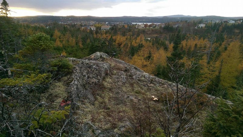 Rock Climbing Photo: View from on top of the boulder.