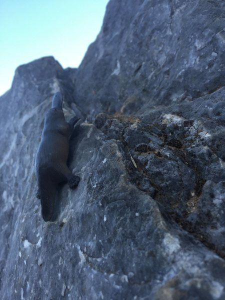 Rock Climbing Photo: Memorial Wall