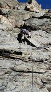 Rock Climbing Photo: Wild Bore (5.7)