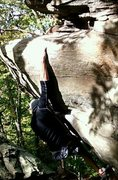 Rock Climbing Photo: Fun overhang