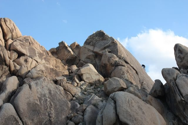 Climbing at the Big Top, Joshua Tree NP
