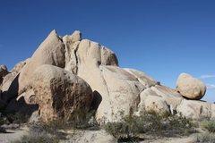 Rock Climbing Photo: Another view of The Grain Mutiny (5.3 R), Joshua T...