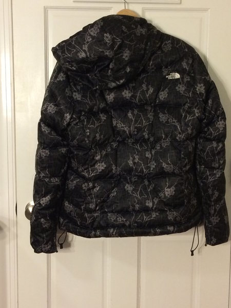 North Face Back