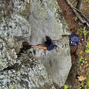 Rock Climbing Photo: Leading The Price Is Right (5.7) at Fern, AR.