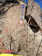 Rock Climbing Photo: Red triangles show the start holds and the blue ar...