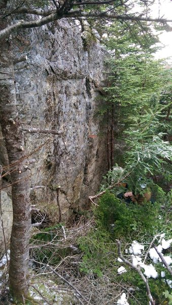 Rock Climbing Photo: Left side.