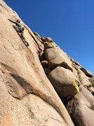 Rock Climbing Photo: Micah at the fall 2015 gathering