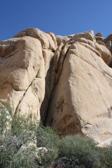 Looking up Oversight (5.10a), Joshua Tree NP