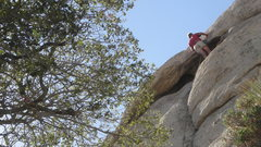 Rock Climbing Photo: T.T. on P.B.