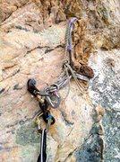 Rock Climbing Photo: Pitch 1 anchors.  Bomber.