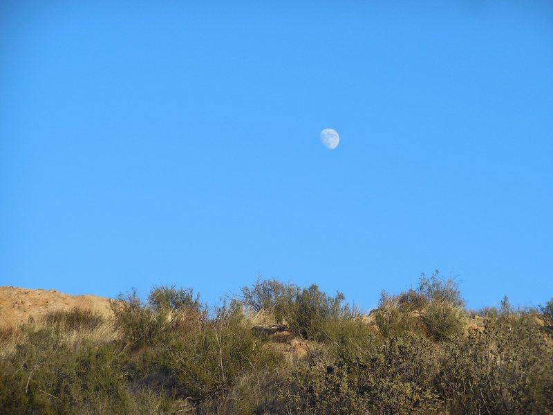 The moon setting over Texas Canyon.