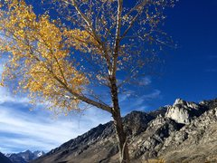 Rock Climbing Photo: The Rabbit Ears, Wells Peak, and autumn leaves as ...
