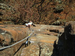 Rock Climbing Photo: Climbing through the crux of Cat Crack