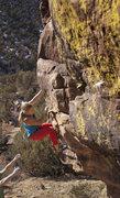 Rock Climbing Photo: Go Trixie!