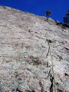 Rock Climbing Photo: Inagottawhat with a directional off the tree at th...