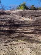 Rock Climbing Photo: Bonsai - Middle & upper P1