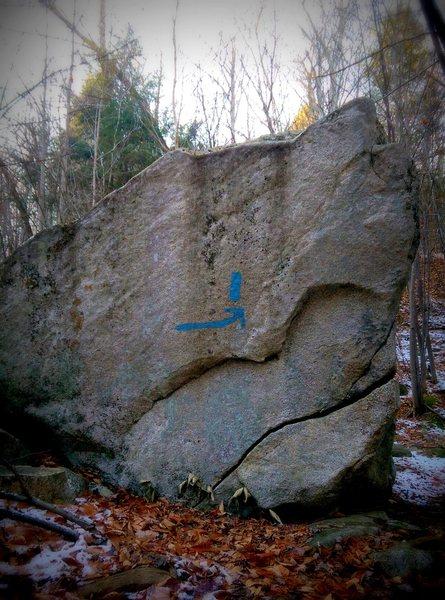 Rock Climbing Photo: Snapper Rock