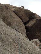 Rock Climbing Photo: Fun finish!