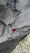 Rock Climbing Photo: Office party...