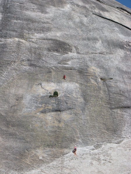 Rock Climbing Photo: Climber on the money pitch of Zee Tree