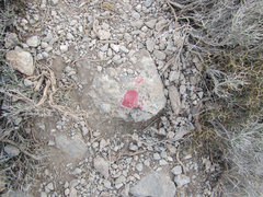 Rock Climbing Photo: The trail is marked with red paint.