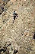 Rock Climbing Photo: Ben leading Captain Albert Alexander.