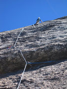 Rock Climbing Photo: Tom Rogers on Goldmember, Medlicott Dome