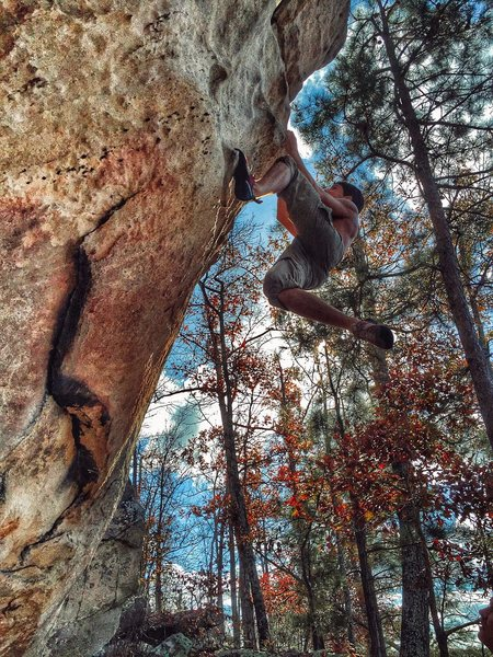 Rock Climbing Photo: Some Dyno action on RTYD