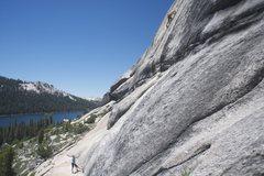 Rock Climbing Photo: Guppie Wall