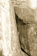 Rock Climbing Photo: Tree Route