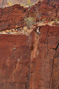 Rock Climbing Photo: Bouldering in the Grand Canyon
