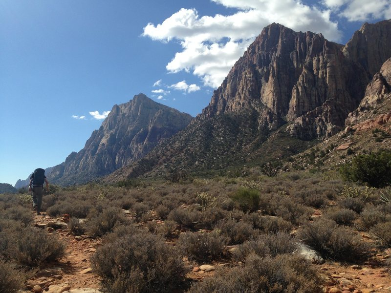Hike into Juniper Canyon, Red Rock Recreation, Nevada