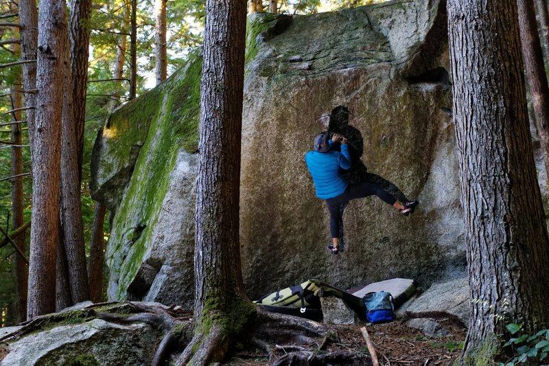 Rock Climbing Photo: Hulkster's Humpfest