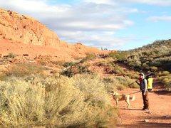 Rock Climbing Photo: LIVE SHOW