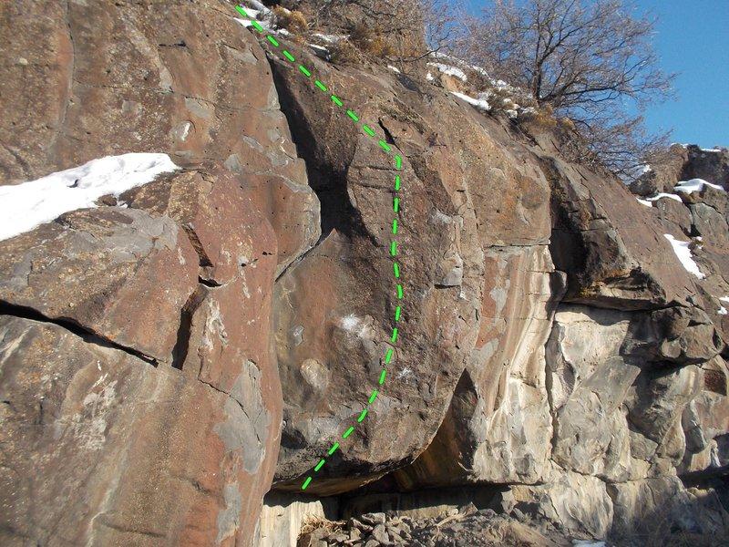 Rock Climbing Photo: Dragonfly Tattoo
