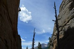 Rock Climbing Photo: Tommy Caldwell cruising up Andrology.