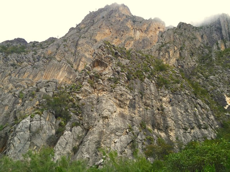 Rock Climbing Photo: Super Mini Wall