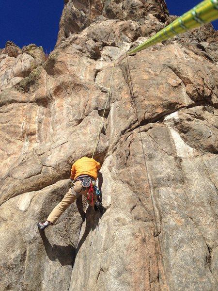Rock Climbing Photo: Spotty Lives.