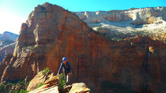 Rock Climbing Photo: Summit of the Organ, Angels Landing in the backgro...