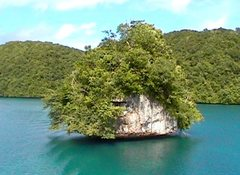 Rock Climbing Photo: Rock Islands, Palau.