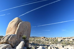 Rock Climbing Photo: For the contrail folks.
