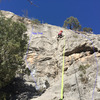 Climber on Traditional Values and beta line for The Harvey.