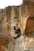 Rock Climbing Photo: Teddy Bear